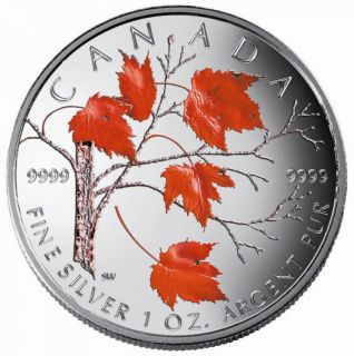 2004 - $5 - WINTER COLORED MAPLE LEAF FINE SILVER .9999