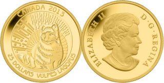 2013 - $25 - Pièce de 1/4 oz en or fin - Le renard arctique