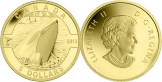 2013 - $5 - 1/10 oz. Pure Gold Coin - Orca