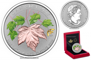 2017 - $300 - 1 oz. Pure Platinum Coin - Maple Leaf Forever