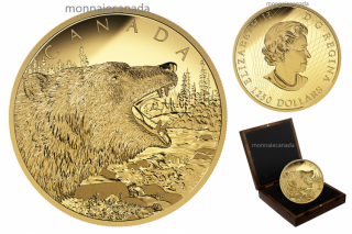 2016 - $1250 - 1/2 Kilogram Pure Gold Coin – Roaring Grizzly Bear