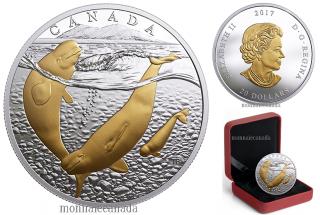 2017 - $20 - 1 oz argent pur placage en or - Trois océans du Canada: Béluga de l'Arctique