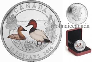 2016 - $10 - 1/2 oz. Fine Silver Coloured Coin – Ducks of Canada: Canvasback