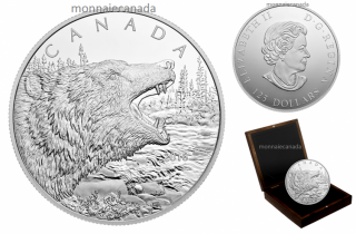 2016 - $125 - 1/2 Kilogram Fine Silver Coin – Roaring Grizzly Bear