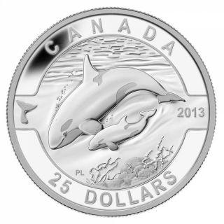 2013 - $25 - 1 oz. Fine Silver Coin - Orca