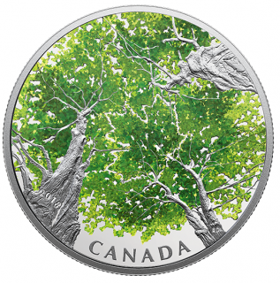 2018 - $30 - 2 oz. Pure Silver Coin - Canadian Canopy: The Maple Leaf