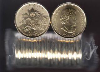2016 Canada $1 Dollar - Lucky Loonie - BU ROLL 25 Coins - UNC