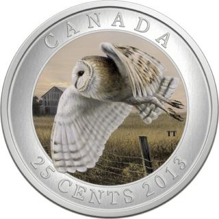 2013 - Barn Owl - Coloured Coin - 25¢