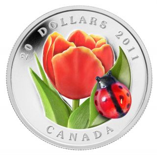 2011 - $20 - Fine Silver Coin - Tulip with Venetian Glass Ladybug