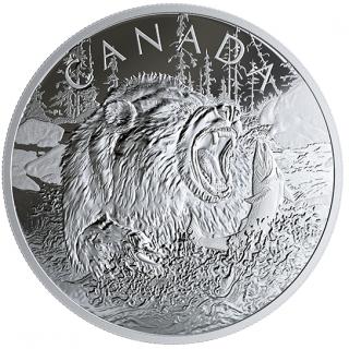 2019 - $125 - Pièce de 1/2 kilogramme en argent pur - Prédateurs féroces : Le grizzli