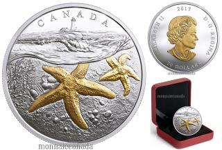 2017 - $20 - 1 oz argent pur placage en or - Trois océans du Canada : Étoiles de mer de l'Atlantique