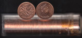1971 Canada 1 Cent - BU ROLL 50 Coins - UNC - in Plastic Tube