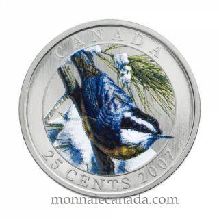 2007 Canada 25 cents  Sittelle a poitrine rousse - Oiseau