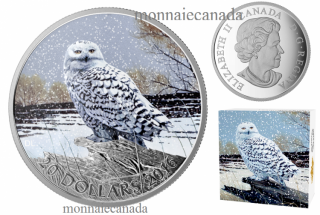 2016 - $20 - 1 oz. Fine Silver Coloured Coin - Snowy Owl