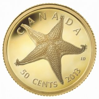 2013 - 50 Cents - 1/25 oz Pure Gold Coin - Starfish